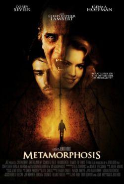 Metamorfoza / Metamorphosis