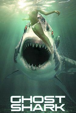 Rekin widmo / Ghost Shark