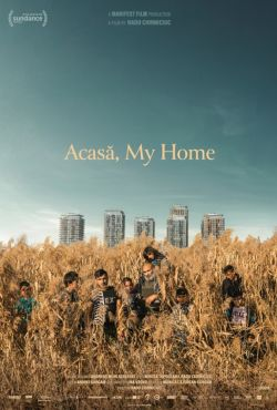 Acasa, mój dom / Acasă, My Home