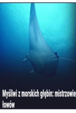 Myśliwi z morskich głębin: mistrzowie łowów / Deep Sea Killers: Into The Dark
