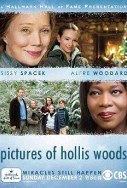 Historia Hollis Woods / Pictures of Hollis Woods