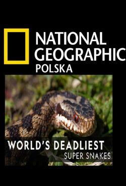 Najgroźniejsze zwierzęta świata: Zabójcze węże / World's Deadliest: Super Snakes