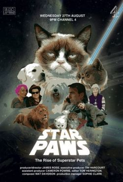 Star Paws: The Rise of Superstar Pets