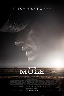 Przemytnik / The Mule