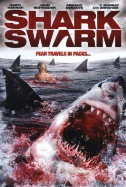 Stado rekinów / Shark Swarm