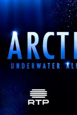 Arktyka. Niezidentyfikowany podwodny świat / Arctic: Underwater Aliens